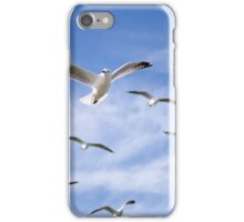 On the wing - seagulls iPhone Case/Skin