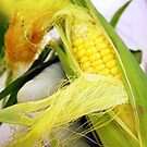 Gardener&#x27;s Corn by Karin  Hildebrand Lau