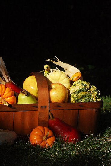 Autumn Harvest by Karin  Hildebrand Lau