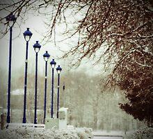A walk in November by Janet Gosselin