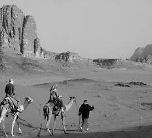 Camel trekking by Matthew Owen