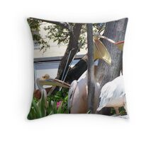 Pelicans x two  Throw Pillow
