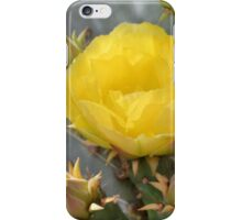 Yellow Cactus Bloom and Buds iPhone Case/Skin