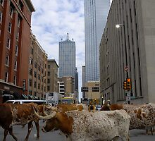 Dallas Streets by Kenneth Fugate