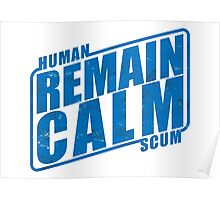 Remain Calm Poster