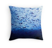 Barracuda's from below Throw Pillow