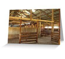 Oakhampton Wool Shed.  Near Tamworth, NSW Greeting Card