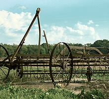 Antique Plow in Indiana by Brad Staggs
