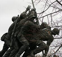 Iwo Jima another view by Nicki Kenyon