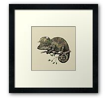 Born to Hide  Framed Print