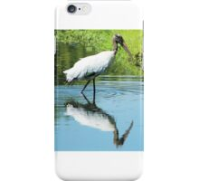 Wood Stork in Pond iPhone Case/Skin