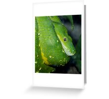 Wet scales. Greeting Card