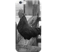 Rooster on a Fence iPhone Case/Skin
