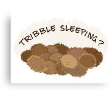 Tribble sleeping? Canvas Print