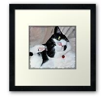 Hindpaw Salute Framed Print