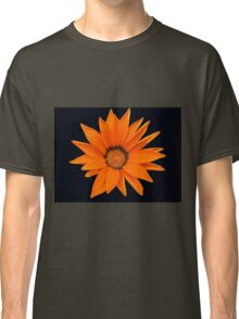 Glorious Orange Gazenia  Classic T-Shirt
