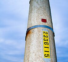 Pole 2336115 by Marnie Hibbert