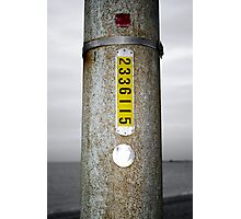 Just another Light Pole Photographic Print