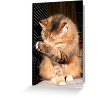 Can't Show My Face Greeting Card