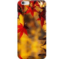 Autumnal red and yellow iPhone Case/Skin
