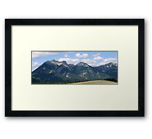 Jasper Beauty Framed Print