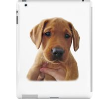 Clifford the dog iPad Case/Skin