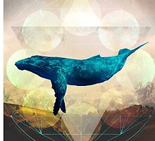 A Whale's Dream by hiltondesigns
