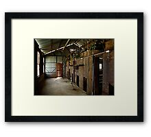 Old Shearing Shed Framed Print