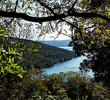 A Peek at Keuka Lake by Cheri Perry