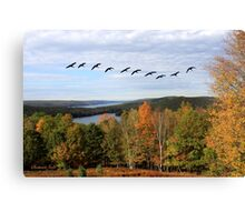 Autumn Intensity at Quabbin Reservoir Canvas Print
