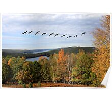 Autumn Intensity at Quabbin Reservoir Poster