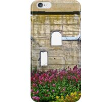 Beautiful Abandonment iPhone Case/Skin
