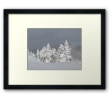 Beautiful mountaintop snowscape Framed Print