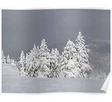 Beautiful mountaintop snowscape Poster