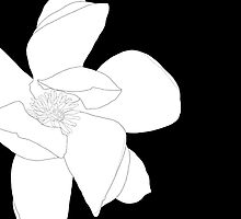 Magnolia 3253 BW Drawing by wolfcat
