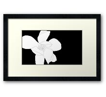 Magnolia 3253 BW Drawing Framed Print