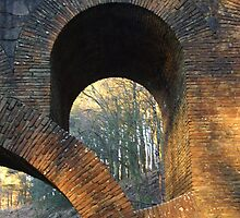 Arch by Paul Gibbons