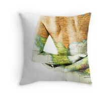 topography Throw Pillow