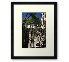 Trees in Venice Framed Print