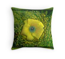 The eye of a Daylilly Throw Pillow