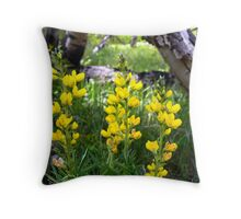 A Bit Of Colorado Gold... Throw Pillow