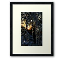 Winter in Gotham City  Framed Print
