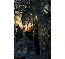Winter in Gotham City  Photographic Print
