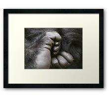 Gorilla Feet Framed Print