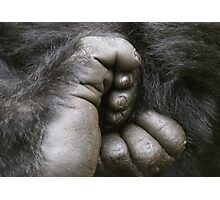 Gorilla Feet Photographic Print