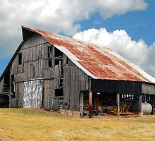Buck's Barn #3 by Tony L. Callahan