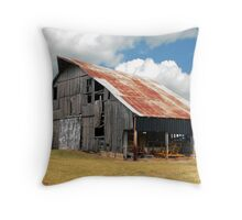 Buck's Barn #3 Throw Pillow
