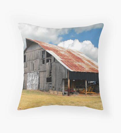 Buck's Barn #3 Throw Pillow