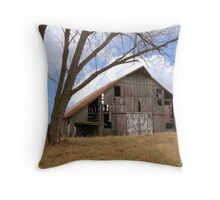 Buck's Barn #4 Throw Pillow