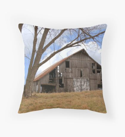 Buck's Barn #4 Throw Pillow